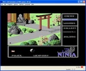 The Last Ninja screen shot 4